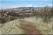 SE3209 : From Swallow Hill to Mapplewell by Chris Yeates