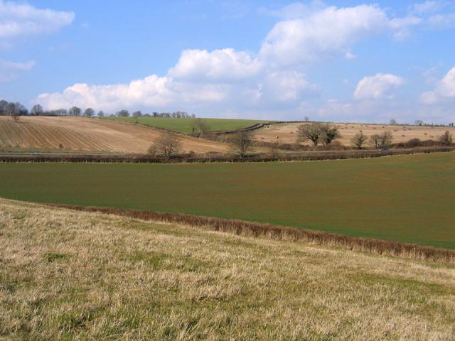 Diagonals in the landscape, Sherborne, Dorset