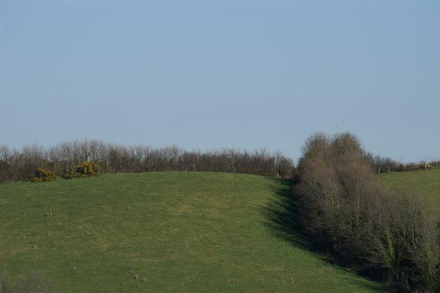 Field on a Hillside