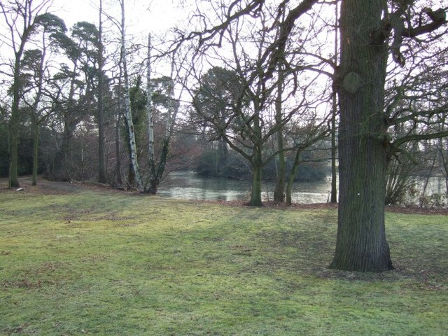 Wood and Lake off Hillswood Drive