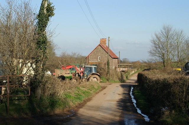 Tractors at the Farm
