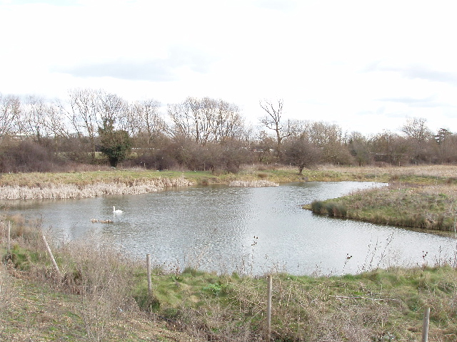 Pond on Stanwell Moor