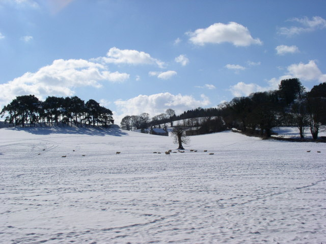 Snowscene near the Nantclwyd Estate.