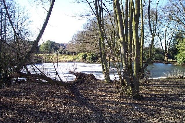 Frozen Pond at Aldershawe Hall