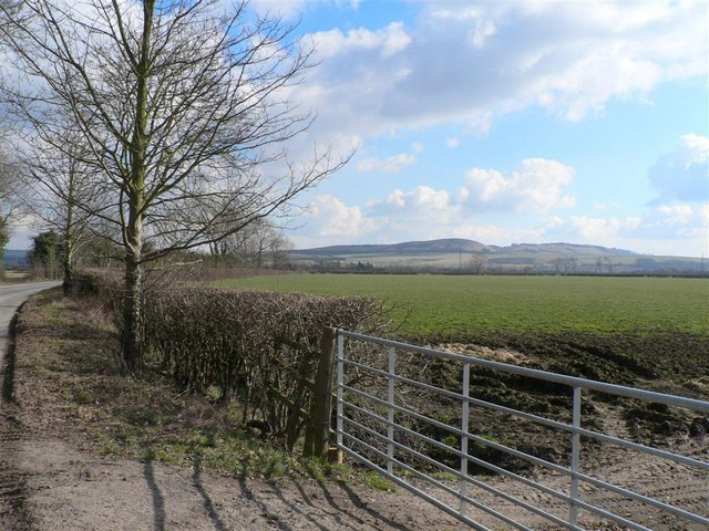 View from road to Ivinghoe Aston