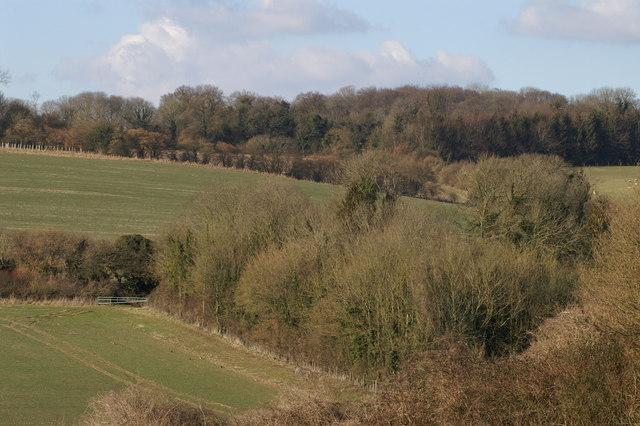 Nan Trodd's Hill