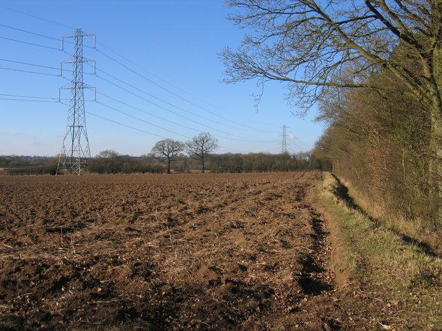 Footpath beside Weethley Wood