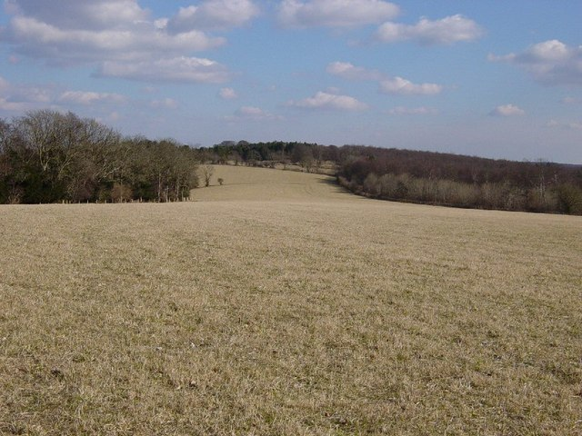 Field between Gadd's Bottom and Charlton Forest
