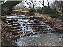 SZ0696 : Kinson Common Water fall by James