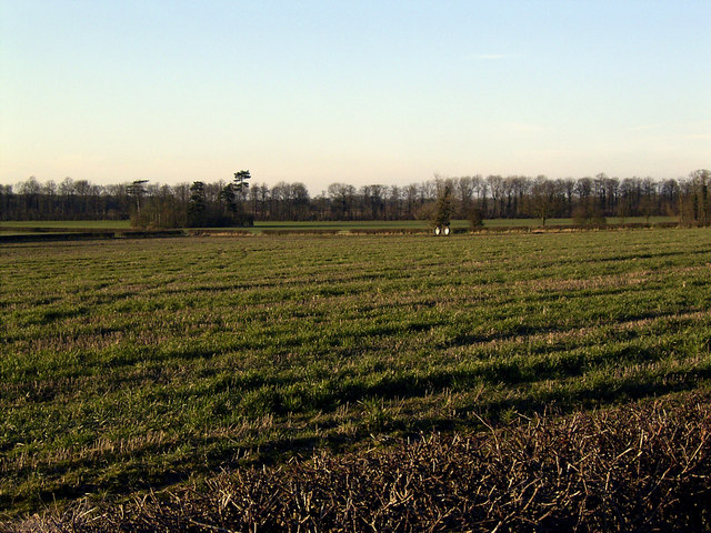 Farmland in the Gopsall Estate