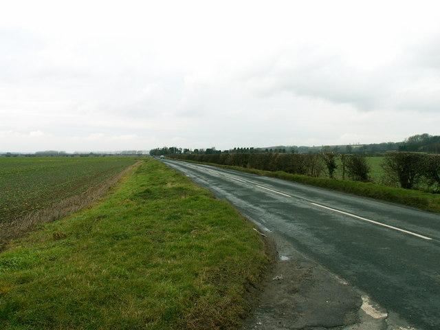 The Elsham Road