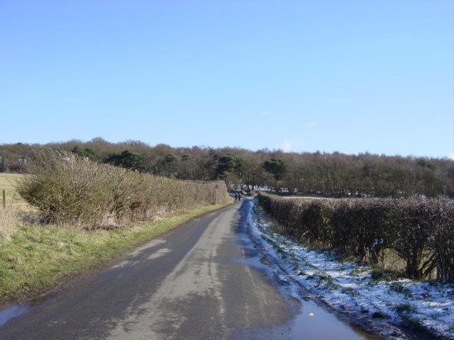 Marsh Lane, Storeton