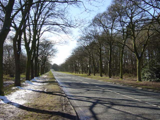 Lever Causeway, Storeton