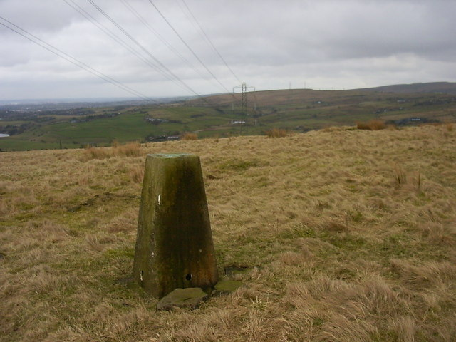 Water Grove trig