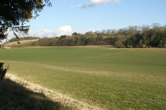 Dry Valley near Hursley