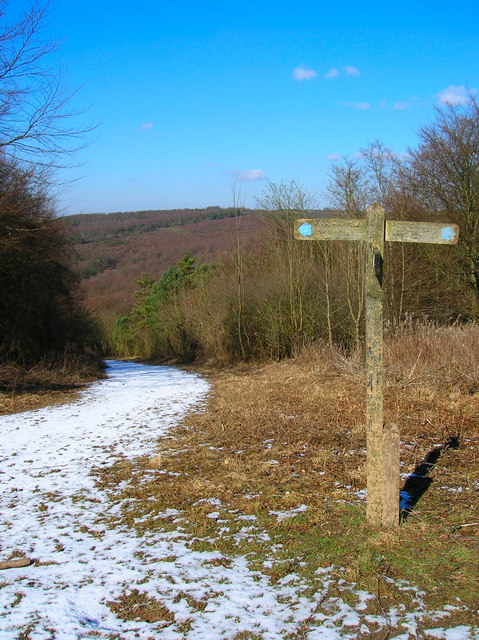 Bridleways crossing, Snap Hill
