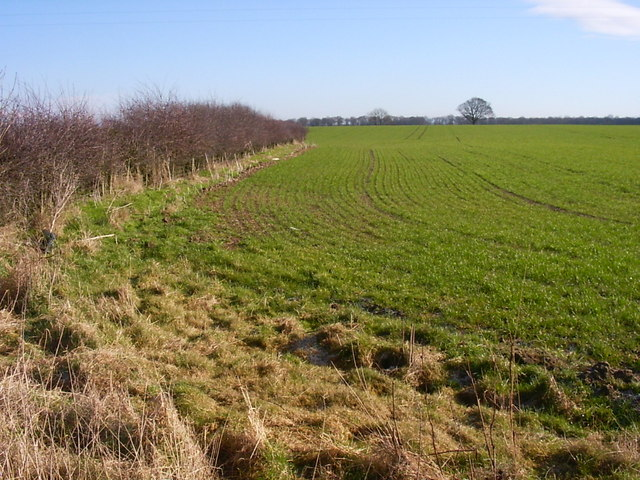 Farmland near Westfield House trig