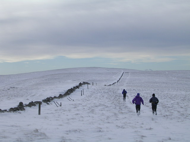 Ridge between Firthybrig Head and Donald's Cleuch Head