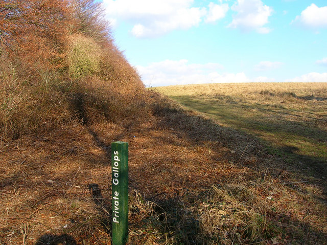 Friston Hill