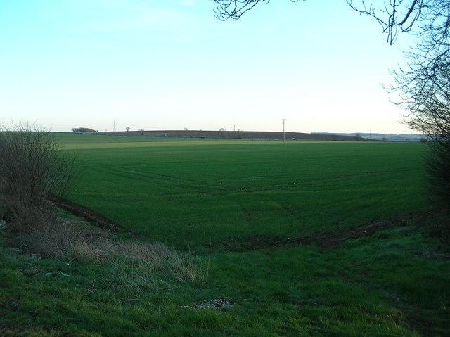Field near Barnsdale Bar