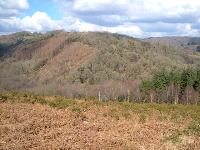 Bovey valley below Hisley bridge