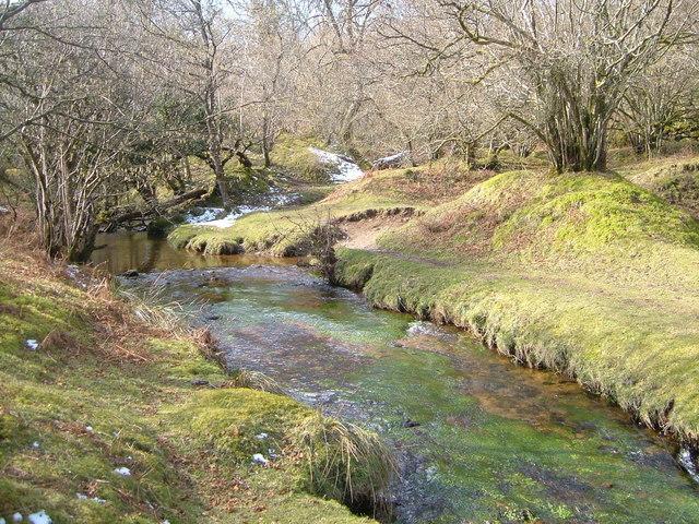 Becka Brook near Holwell