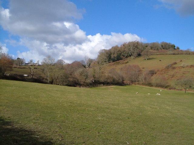 Valley below Hatherleigh, nr Lustleigh