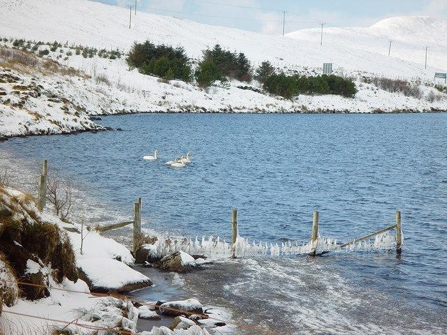 Loch of Voe, Shetland