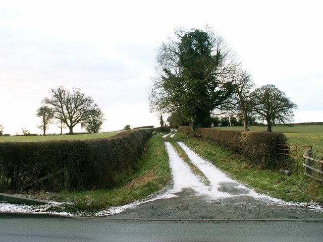 Towards Bank Cottage