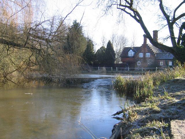 Yelverton village pond