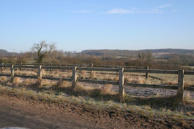 Gallop near Grimston, Leicestershire