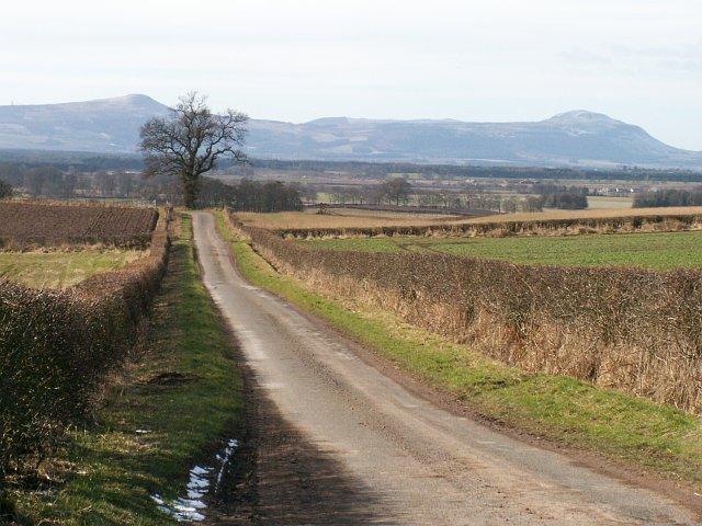 Farmland by East Hall