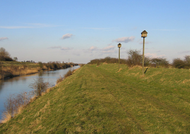 Nesting boxes, South Forty Foot Drain, Swineshead, Lincs