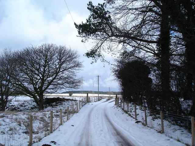 Caerwys lane