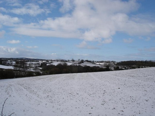 Lixwm fields