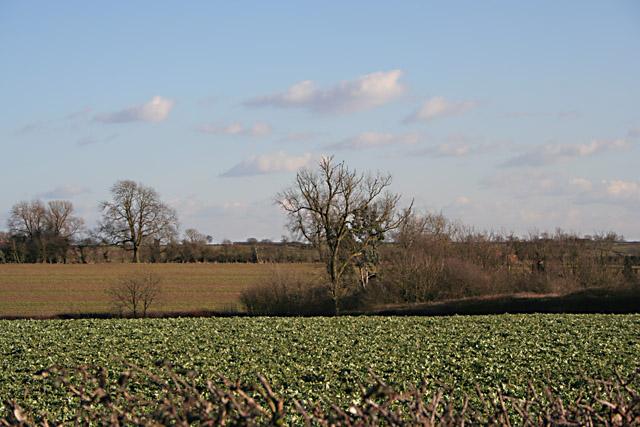 Farmland near Seagrave