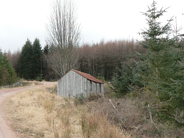 Forester's hut