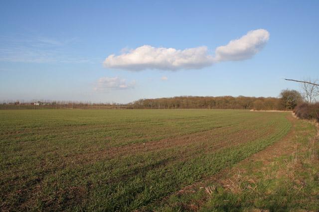 Farmland near Six Hills, Leicestershire