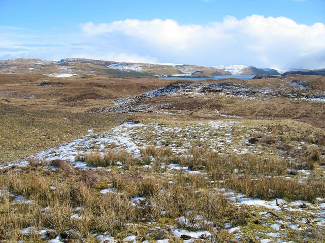 Moorland above Bracadale Point