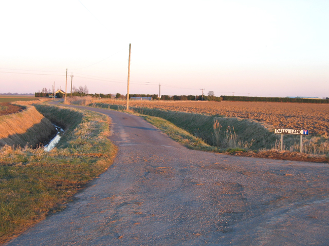 Dales Lane, Swineshead, Lincs