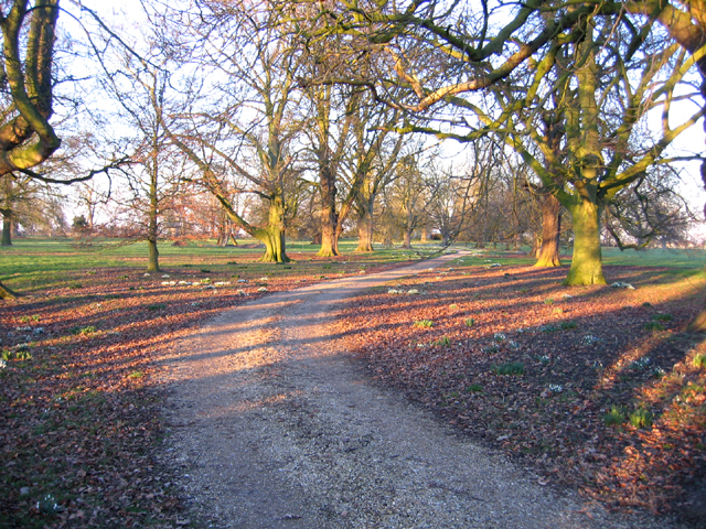 Abbey Farm drive, Swineshead, Lincs