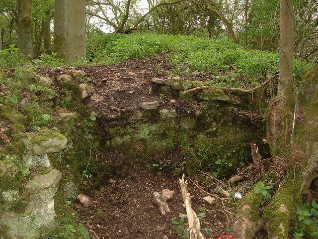 Medieval Hunting Lodge remains near Ashton