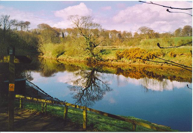 River Coquet at Warkworth.