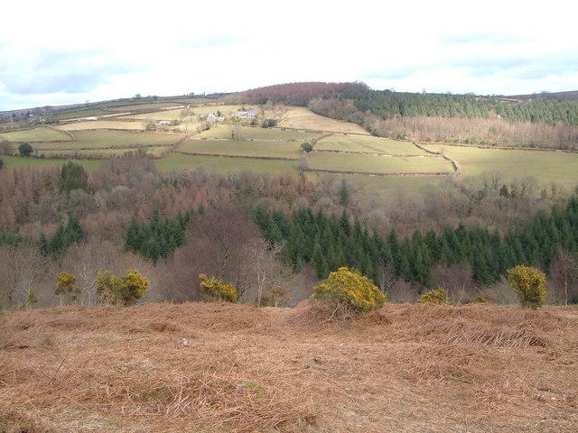 View across Webburn valley from Blackadon Tor