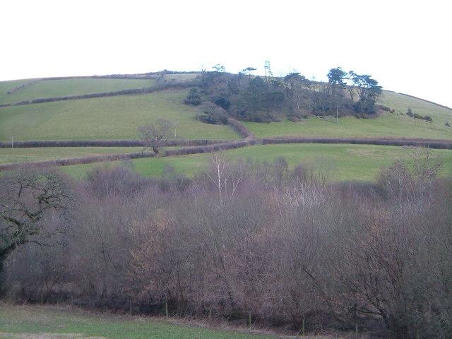 View near Ashburton