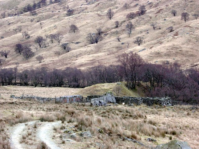 Sheepfold in Glen Finglas