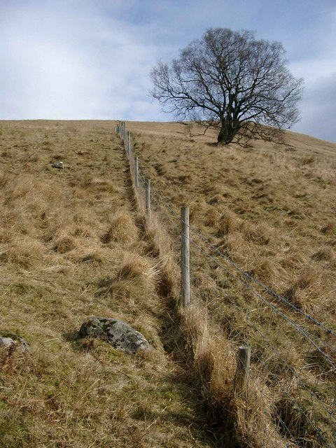 Fence on the SW slope of Meall Cala