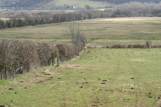 Fields By Walton in Gordano