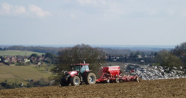 Ploughing near Clanfield