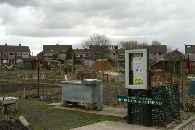 Moor Lane Allotments, Clevedon